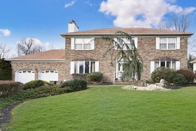 Piscataway Twp. NJ Single Family Home For Sale: $569,900