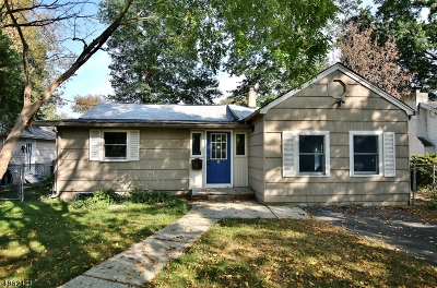 Parsippany-Troy Hills Twp. Single Family Home For Sale: 6 Sioux Ave
