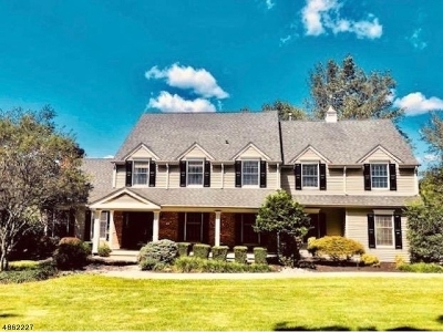 Hunterdon County Single Family Home For Sale: 119 Foothill Rd