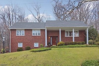 Mountainside Boro Single Family Home For Sale: 1177 Ridge Dr