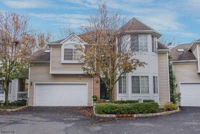 Chatham Boro Condo/Townhouse For Sale: 28 Schindler Ct