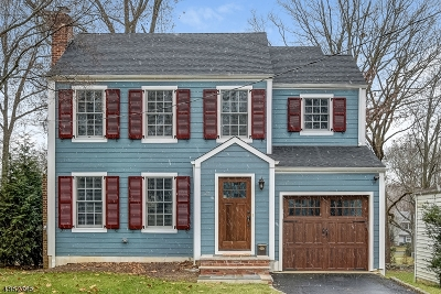 Chatham Boro Single Family Home For Sale: 27 Tallmadge Ave
