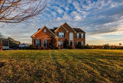 Hunterdon County Single Family Home For Sale: 134 Evergreen Pl