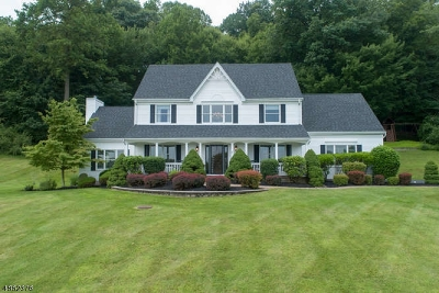 Raritan Twp. Single Family Home For Sale: 17 Scarlet Oak Rd