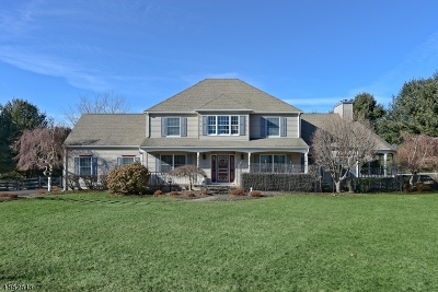 Hunterdon County Single Family Home For Sale: 49 Pleasant Grove Rd