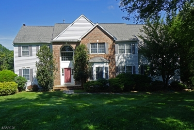 Hunterdon County Single Family Home For Sale: 4 Nicole Ter