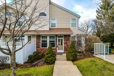 Somerset County Condo/Townhouse For Sale: 38 High Pond Ln