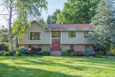 Montville Twp. Single Family Home For Sale: 8 Marguerite Ln