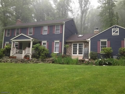 Hunterdon County Single Family Home For Sale: 460 Shire Rd