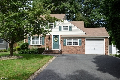 Fanwood Boro Single Family Home For Sale: 106 Willoughby Rd