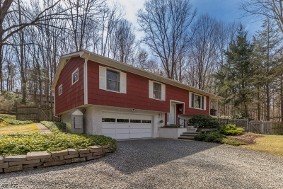 Hunterdon County Single Family Home For Sale: 6 Schoolhouse Ln