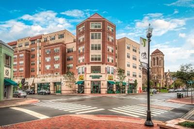 Montclair Twp. Condo/Townhouse For Sale: 48 S. Park Street Unit 220 #220