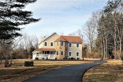 Alexandria Twp. Single Family Home Active Under Contract: 390 Woolf Rd