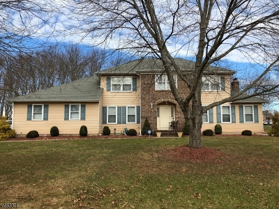 Branchburg Twp. Single Family Home For Sale: 1040 Hillcrest Dr