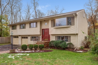 Chatham Boro Single Family Home For Sale: 6 Henderson Rd