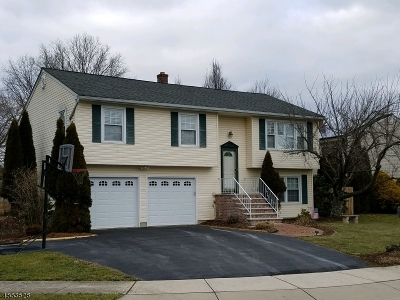 Flemington Boro Single Family Home For Sale: 9 Village Ct