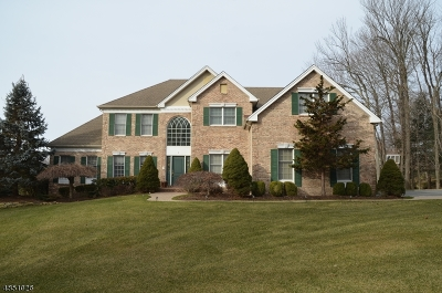 Mount Olive Twp. Single Family Home For Sale: 5 Ashley Dr