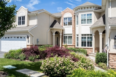 West Orange Twp. Condo/Townhouse For Sale: 36 Metzger Dr