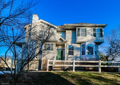 Raritan Twp. Condo/Townhouse For Sale: 17 Haddenford Dr