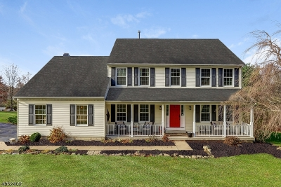 Hunterdon County Single Family Home For Sale: 40 Brookside Dr
