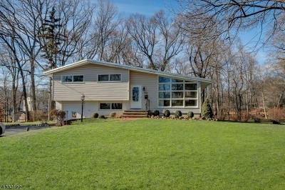 Parsippany-Troy Hills Twp. Single Family Home For Sale: 190 Wingate Rd