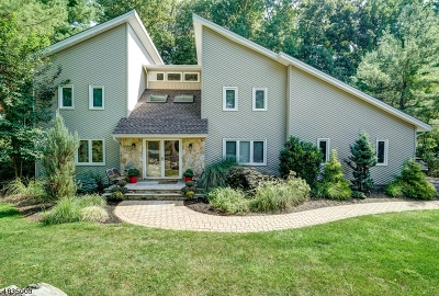Parsippany-Troy Hills Twp. Single Family Home For Sale: 9 Meadow Bluff Rd