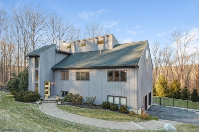 Mendham Boro, Mendham Twp. Single Family Home For Sale: 18 Conifer Dr