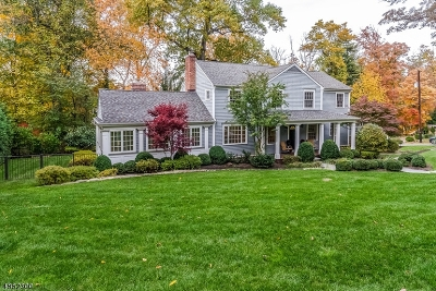 Chatham Boro Single Family Home For Sale: 50 Highland Ave