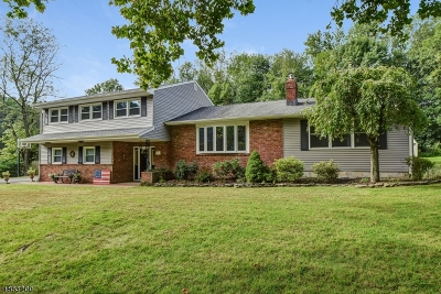 Scotch Plains Twp. Single Family Home For Sale: 20 Essex Rd