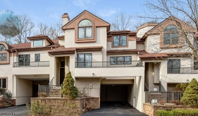 West Orange Twp. Condo/Townhouse For Sale: 3 Schindler Ter