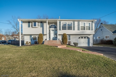 Mount Olive Twp. Single Family Home For Sale: 18 Glendale Rd