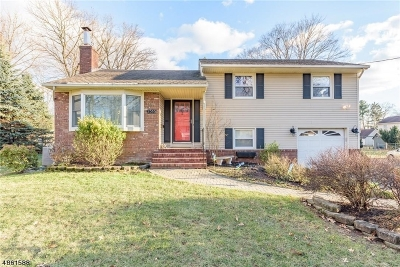 Scotch Plains Twp. Single Family Home For Sale: 2518 Mountain Ave