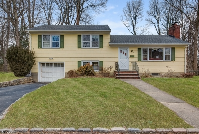 Millburn Twp. Single Family Home For Sale: 22 Dameo Pl