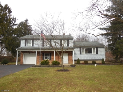 Bridgewater Twp. NJ Single Family Home For Sale: $543,500