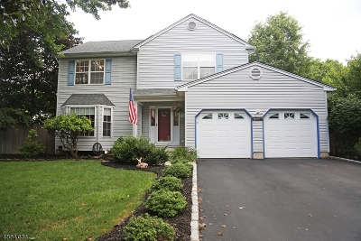 Piscataway Twp. NJ Single Family Home For Sale: $549,000