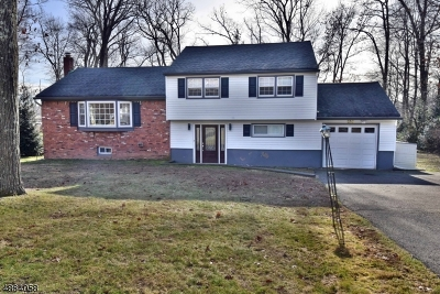 Franklin Lakes Boro Single Family Home For Sale: 218 Mabel Pl