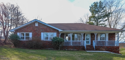 Somerset County Single Family Home For Sale: 272 Long Hill Rd