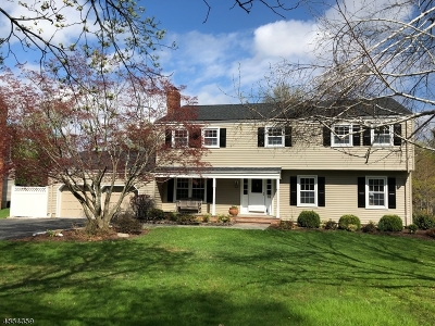 Mendham Boro, Mendham Twp. Single Family Home For Sale: 14 Phoenix Dr