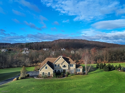 Hunterdon County, Somerset County Single Family Home For Sale: 199 Old Turnpike Rd