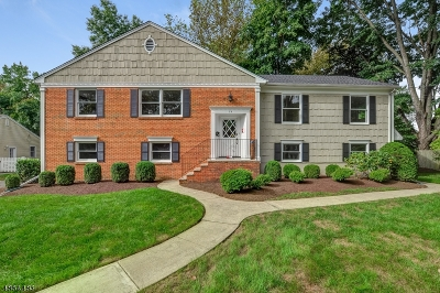 Florham Park Boro Single Family Home For Sale: 24 Midwood Dr