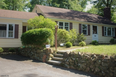 Berkeley Heights Twp. Single Family Home For Sale: 612 Mountain Ave