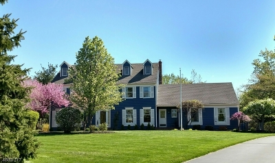 Clinton Twp. Single Family Home For Sale: 10 Squires Ln