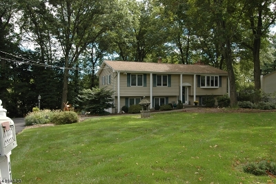Roxbury Twp. Single Family Home For Sale: 27 Unneberg Ave
