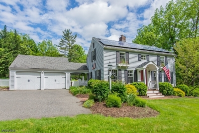 Mendham Boro, Mendham Twp. Single Family Home For Sale: 47 W Main St