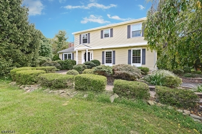 Bethlehem Twp. Single Family Home For Sale: 117 Rounseville Rd