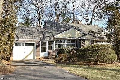 Bergen County Single Family Home For Sale: 167 Garden Ave