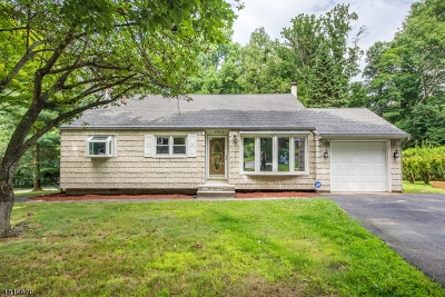 Randolph Twp. Single Family Home For Sale: 176a Park Ave