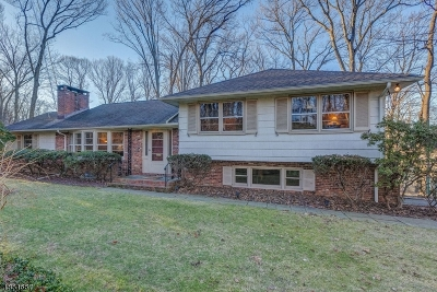 Berkeley Heights Twp. Single Family Home For Sale: 70 Winchip Rd
