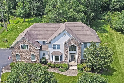 Warren Twp. Single Family Home For Sale: 7 Friar Tuck Court