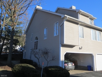 Bedminster Twp. Condo/Townhouse For Sale: 84 Birchwood Rd
